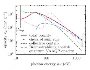 Effets collectifs dans la réponse dynamique des atomes du plasma