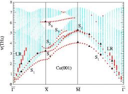 Vibrational properties of Cu vicinal surfaces