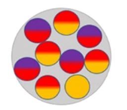 Nouvelle électrode fonctionnelle en alliage InSb pour les batteries magnésium-ion
