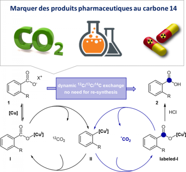 Du CO2 et du cuivre pour le radiomarquage de composés pharmaceutiques / CO2 and copper to radiolabel pharmaceutical compounds