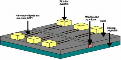 Diodes moléculaires sur Silicium