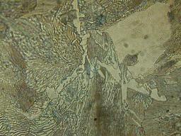 Premières analyses métallographiques des produits sidérurgiques trouvés sur le site médiéval de Castel-Minier (Aulus-les-Bains, 09).