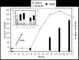 Chemical forms of selenium in the metal-resistant bacterium Ralstonia metallidurans CH34 exposed to selenite and selenate