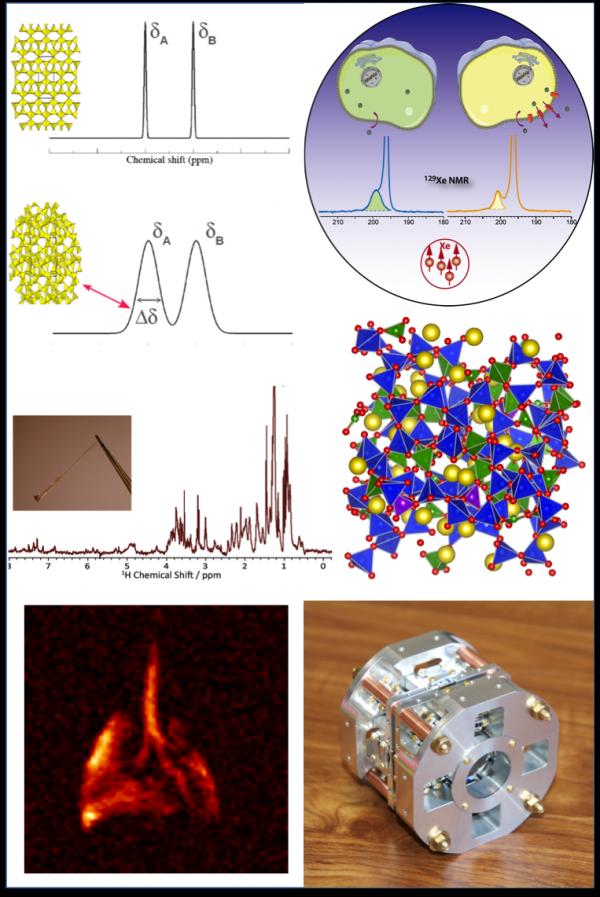 Laboratoire Structure et Dynamique par Résonance Magnétique (LSDRM)