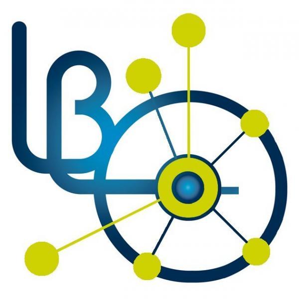 Leon Brillouin Laboratory (LLB)