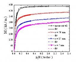 Effect of the antiphase boundaries on the magnetic behavior in epitaxial Fe3O4(111) thin films