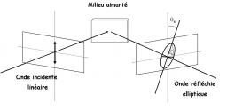 Surface Magneto-optic Kerr Effect