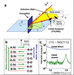 Antiferromagnetism on the surface and volume:  NiO(111)