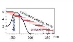 Interaction UV - ADN : hélices modèles