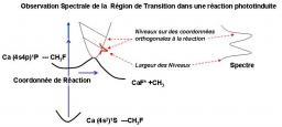 Spectroscopie de l'état de transition, le dispositif EDELWEISS