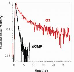 Cooperative effects in the photophysical properties of self-associated triguanosine diphosphates