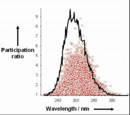 UV Spectra and Excitation Delocalisation in DNA: Influence of the Spectral Width