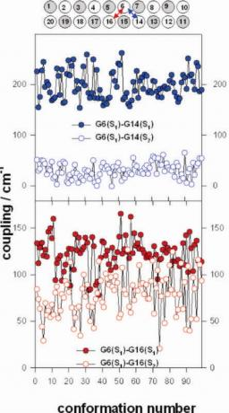 Exciton states of dynamic DNA double helices: alternating dCdG sequences