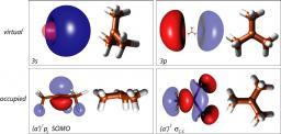 Femtosecond Dynamics of the tert-Butyl Radical, t-C4H9