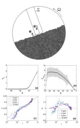 Granular surface flows: Investigation through numerical simulations