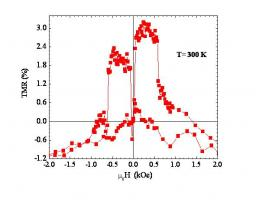 Growth and physical properties of Fe3O4(111)-based epitaxial tunnel junctions