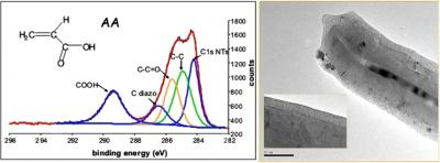 Organic electrograting on carbon nanotubes