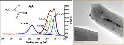 Organic electrograting on carbon nanotubes