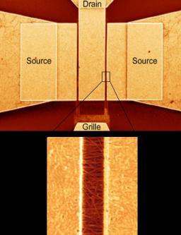 Transistors à base de nanotubes de carbone…  de plus en plus rapides