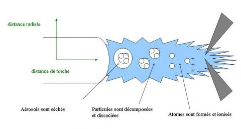 Effets des éléments de matrice sur la sensibilité de la mesure par spectrométrie de masse couplée à un plasma inductif