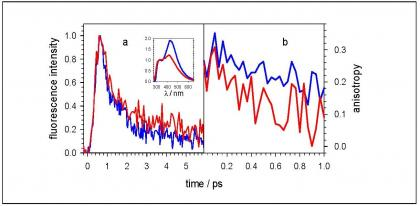 Fluorescence of the DNA double helices (dAdT)n. (dAdT)n studied by femtosecond spectroscopy