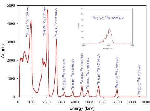 Analyse à la microsonde nucléaire d'échantillons issus de la mission Stardust