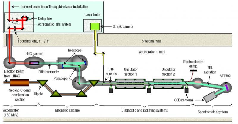 Harmoniques cohérentes du Laser à Electrons Libres générées à partir d\'harmoniques produites dans les gaz.