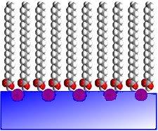 Résolution atomique en diffraction de rayons X sur des films de Langmuir