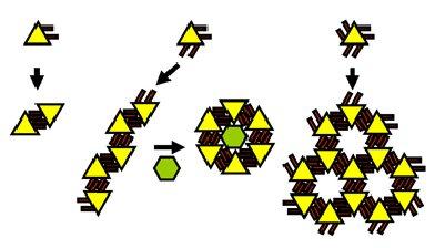 Clips moléculaires : pour un nouveau jeu de construction dans le nanomonde